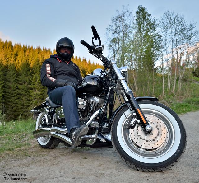 trollkunst16 harley-davidson trondheim fatboy harley hdtrondheim motorsykkel mc klæbu hog parts fat boy skogen