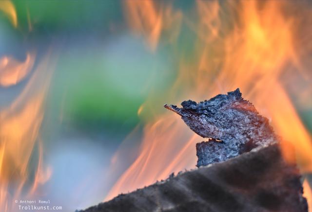 trollkunst22 sankthans sankt hans st hans jonsok satan trondheim tempe bål flamme svidd romul photo